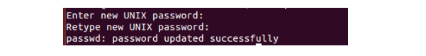 Passwd of Ubuntu user has been changed successfully