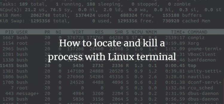 How to kill process on Linux