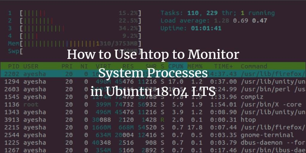 Monitor processes in Ubuntu with htop command