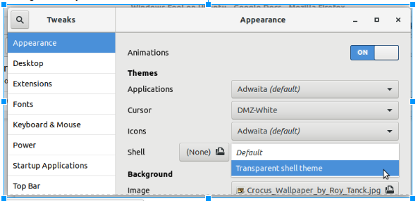Select transparent shell theme
