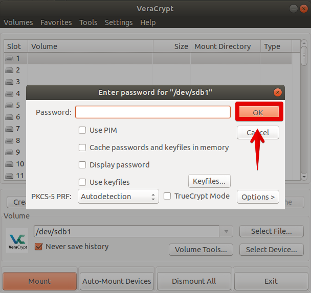 Enter password to decrypt partition