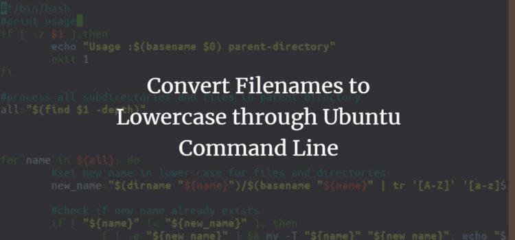 Convert Filenames to Lowercase through Ubuntu Command Line