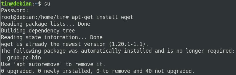Install wget on Debian 10