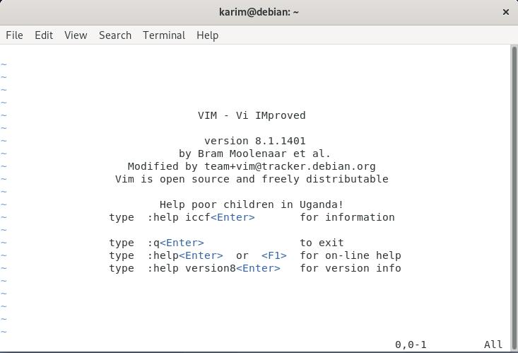 Using Vim Editor