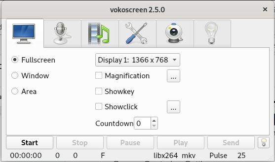 Vokoscreen settings