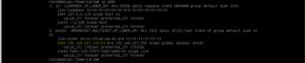 Assign IP addresses permanently