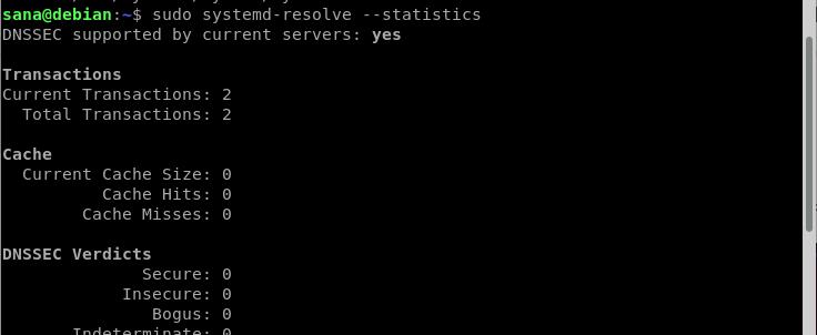 Systemd resolver statistics