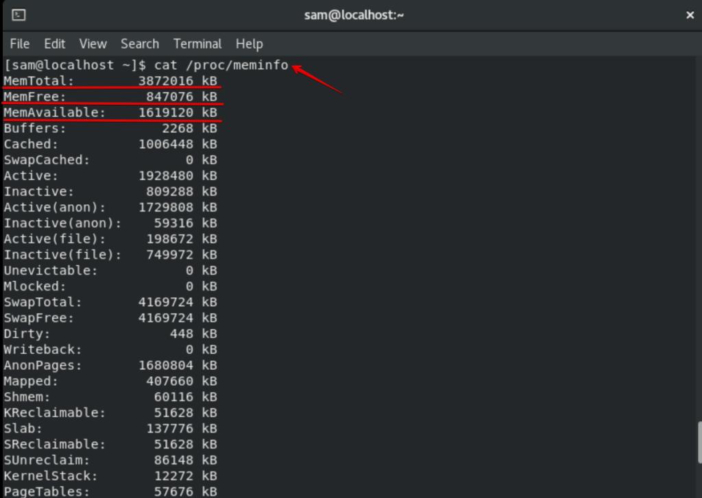 Check memory usage with /proc/meminfo
