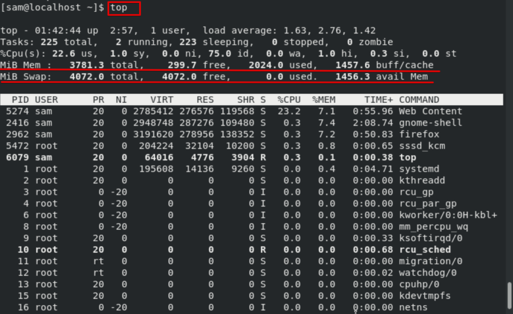 Get memory usage using top command