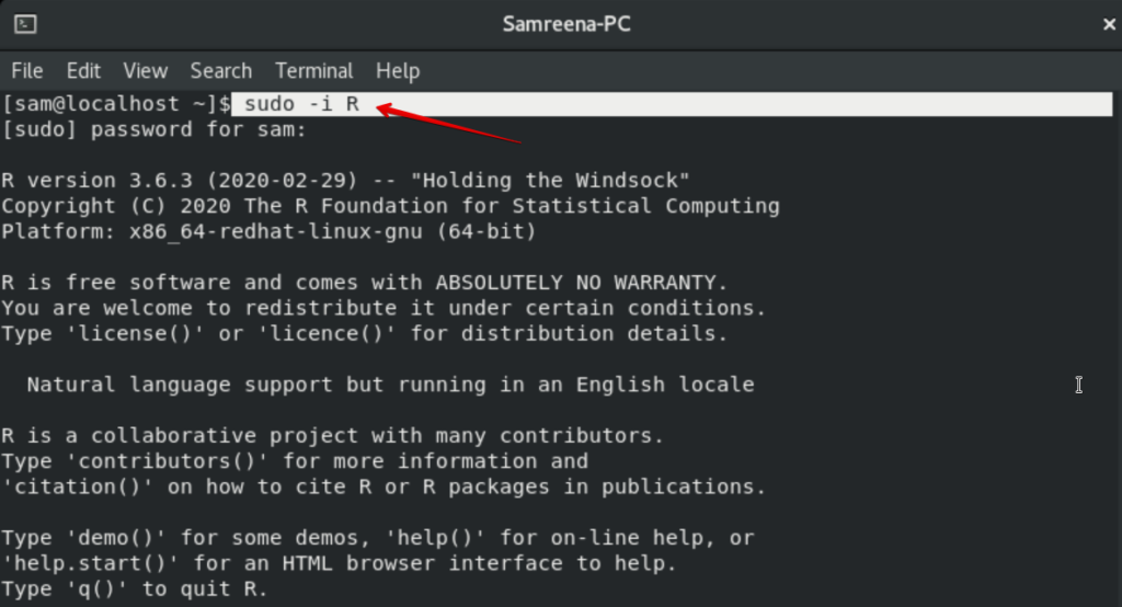 R programming Console