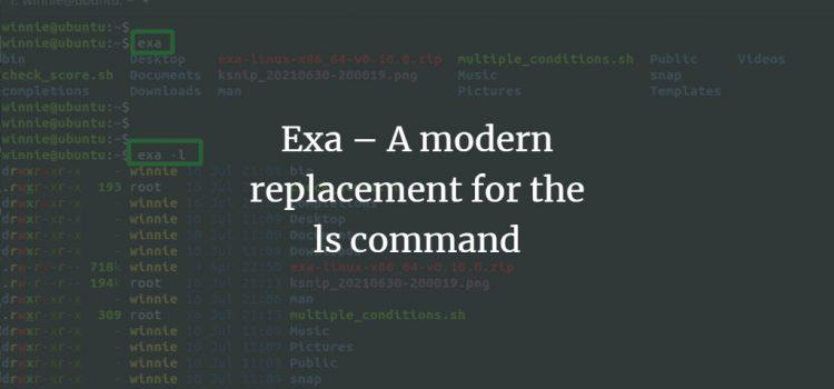 Linux Exa command