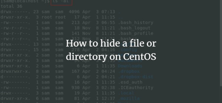 Hide File or Directory
