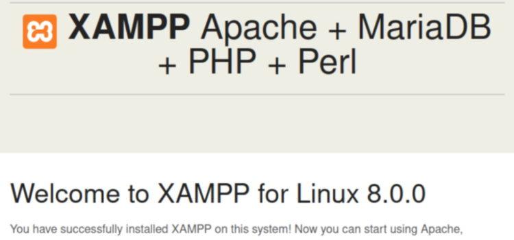 Ubuntu Xampp installation