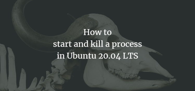 How to start and kill a process in Ubuntu 20.04 LTS