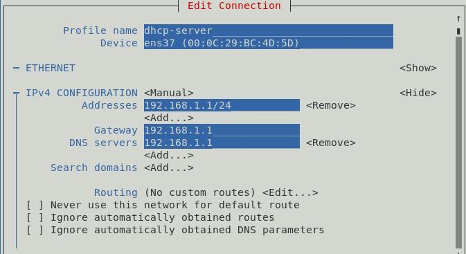 DHCP Client configuration