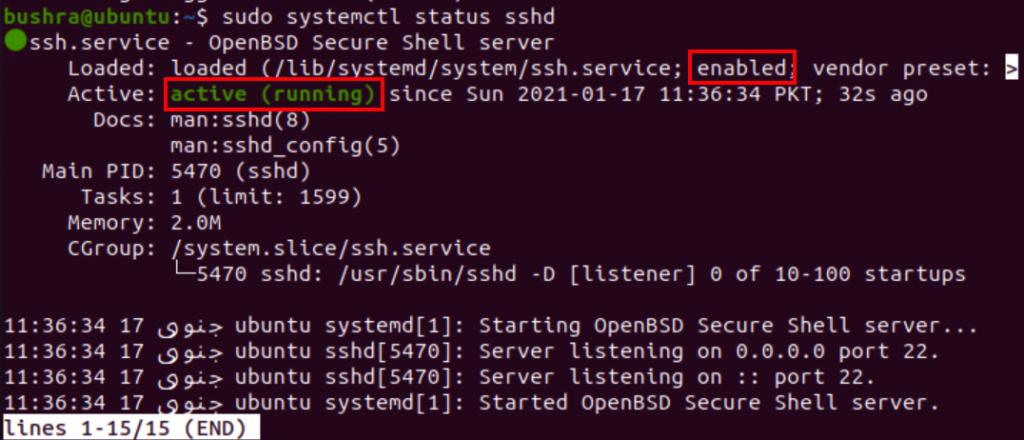SSH Server status