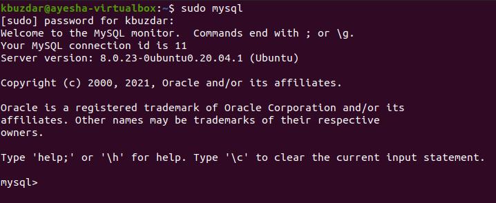 Opened the MySQL shell