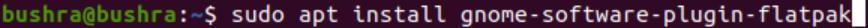 Install GNOME Flatpak integration plugin
