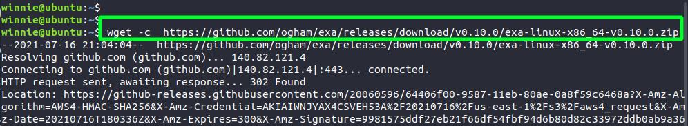 Download Exa command