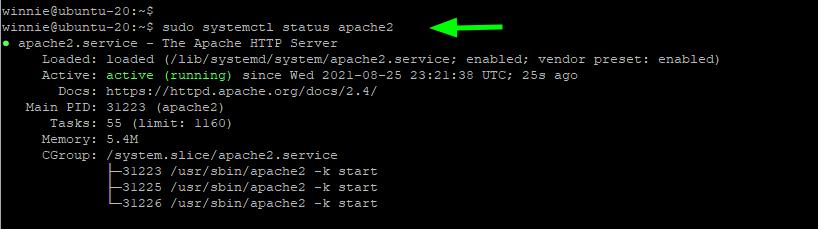 Check apache web server status
