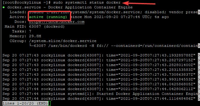 Check Docker status