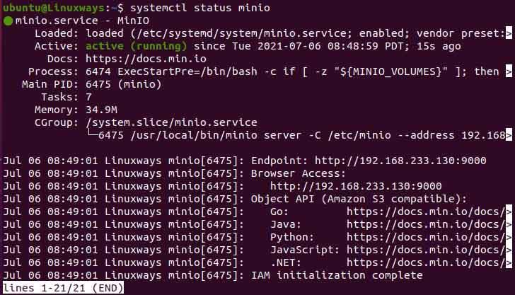minio service status